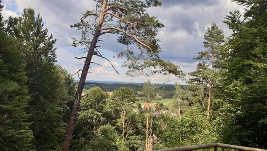 Ausflug zum Gottvaterberg Plech 2021